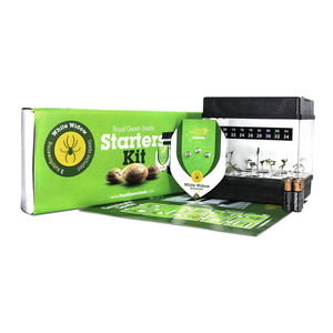 Starter Kit Autofloreciente