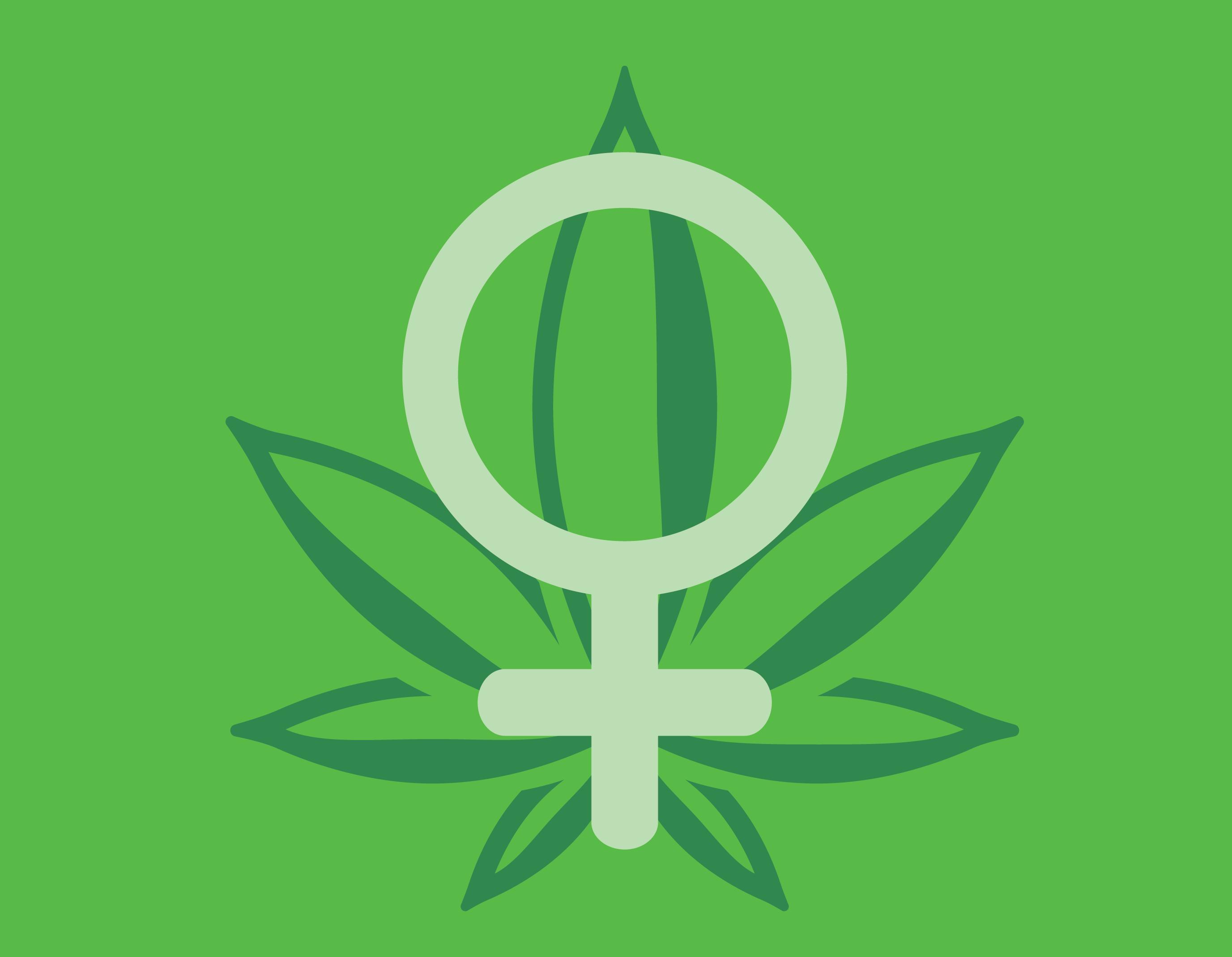 Mujer de cannabis marihuana gustos de los consumidores preferencias real semillas reina favorita
