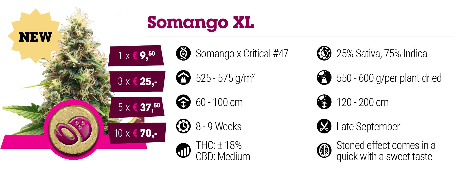 Somango XL