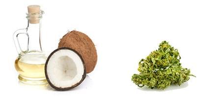 aceite de coco con thc