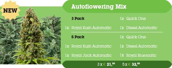 Autoflowering mixpack