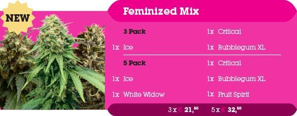 Feminized Mix Pack