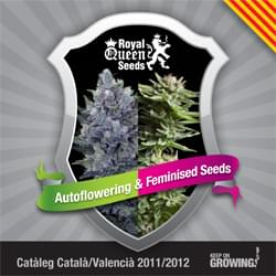 Catalonia Royal Queen Seeds feminizada cannabis catálogo de semillas
