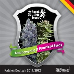 Alemania Royal Queen Seeds feminizada cannabis catálogo de semillas