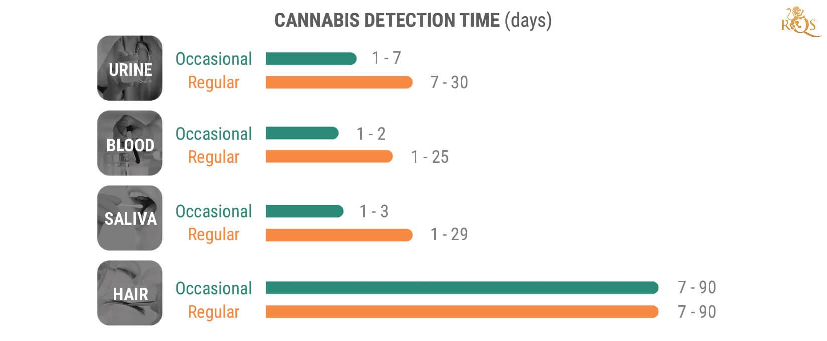 ¿Cuánto Tiempo Permanece El THC En El Organismo?