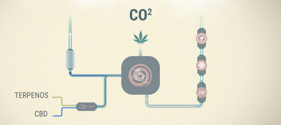 Extracción de CO2 CBD