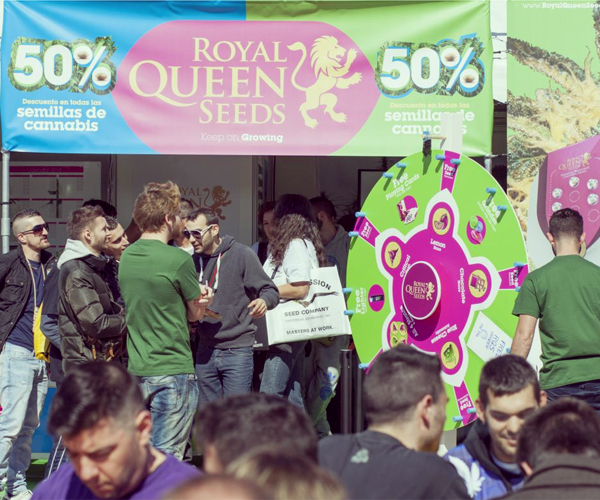 feria cannabis tienda royal queen seeds