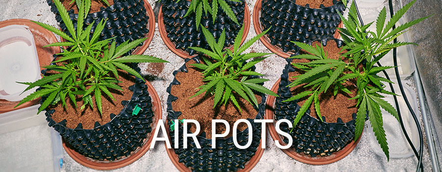 Air Pots Cultivo Cannabis