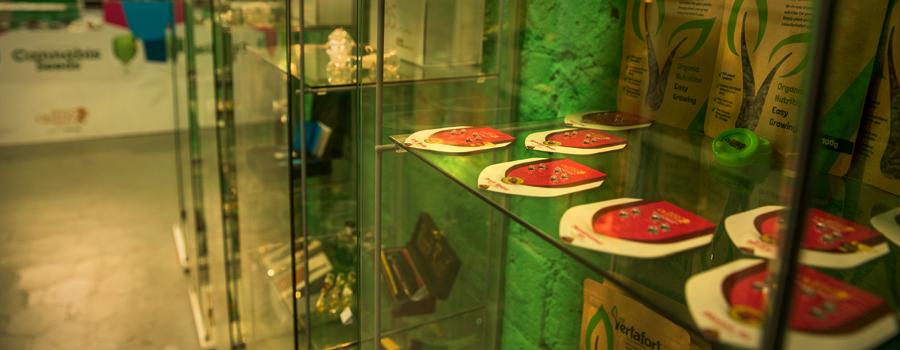 Royal Queen Seeds tiendas Barcelona Carme