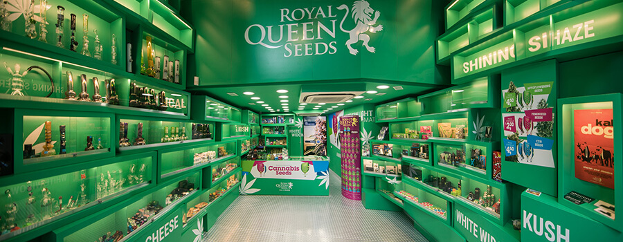 Tienda De Semillas De Cannabis De Royal Queen Seeds En Barcelona