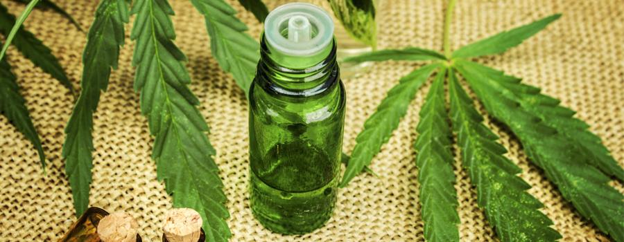 Legalización mercado del petróleo composición de cannabis