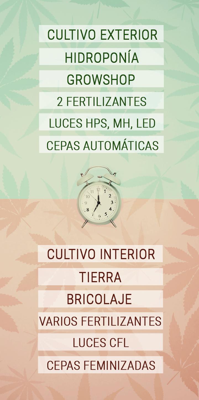 Trucos que ahorran tiempo al cultivador de cannabis con una agenda apretada