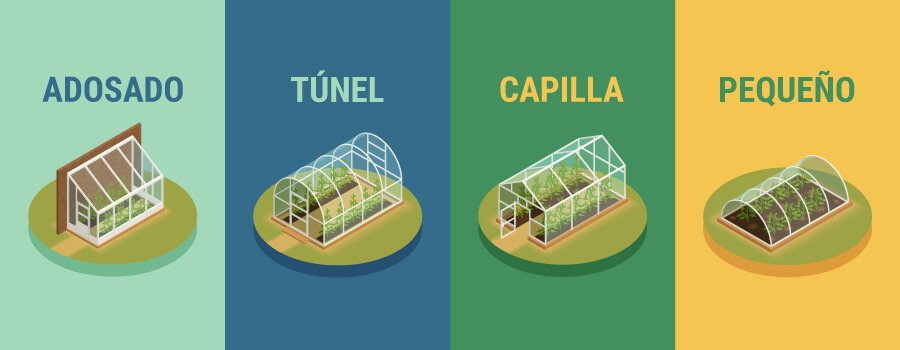 Cómo montar un invernadero para plantar cannabis