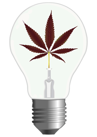 Ahorrar Energía Luces Led Marihuana Cultivo