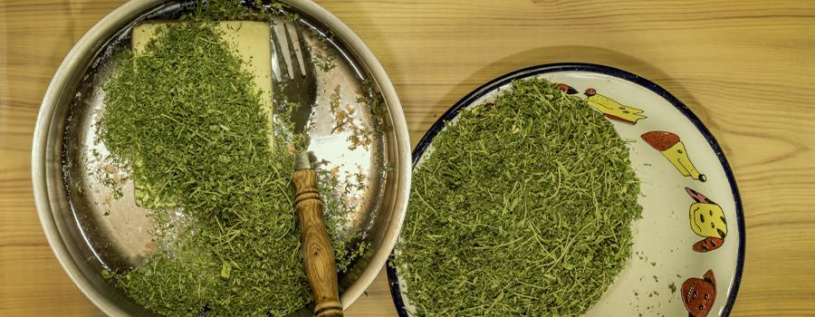 Cannabutter receta cannabis té