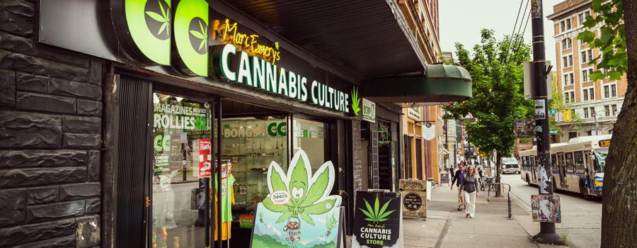 Distribuidor de cannabis