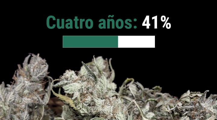 ¿Cuál es la vida útil de la marihuana?