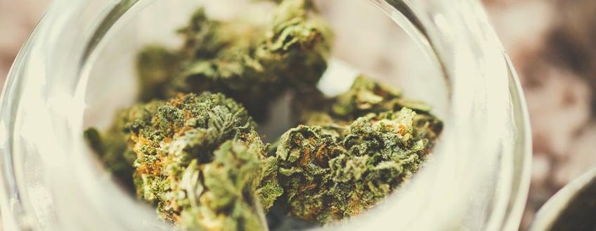8 trucos infalibles para usar vaporizadores de marihuana