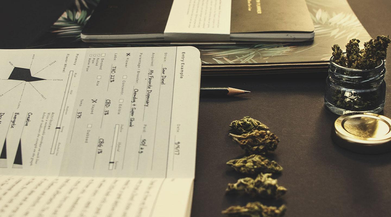 ¿La marihuana puede hacerte perder el control? ¿O sigues siendo consciente de lo que ocurre a tu alrededor?