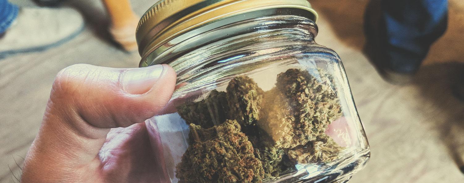 Otros pasos para tener una relación responsable con la marihuana