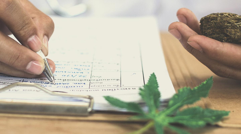 La importancia del contenido de THC para productores y consumidores