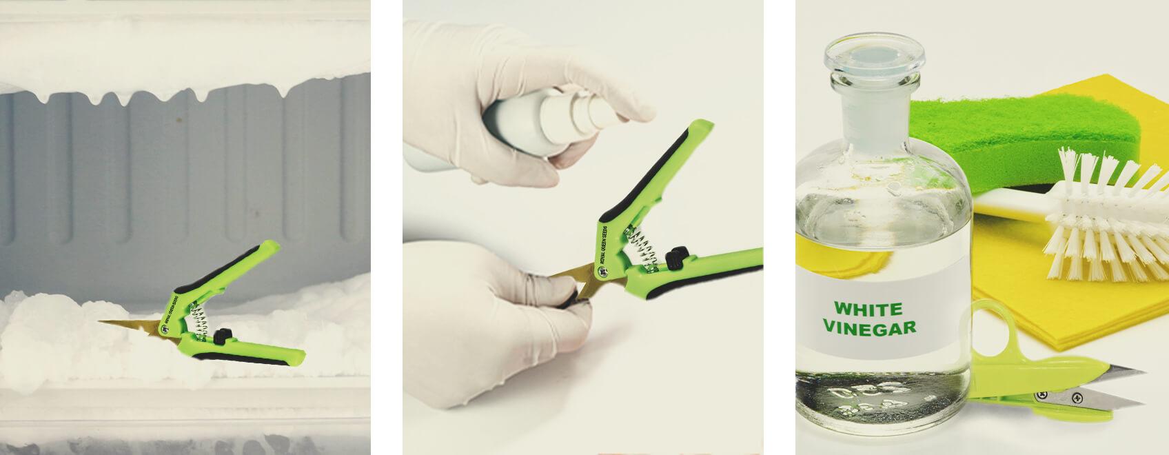 5 formas de limpiar tus tijeras de manicurar cannabis