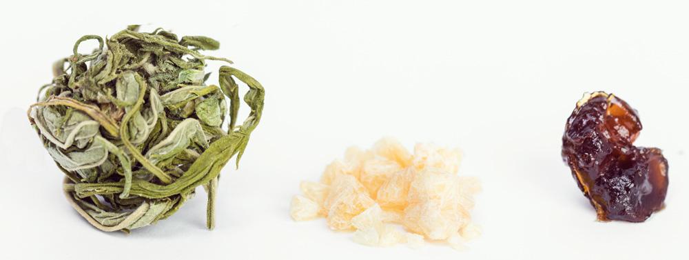 Concentrados cannabis terpenos aceite de extracción cbd marijuana medicinal