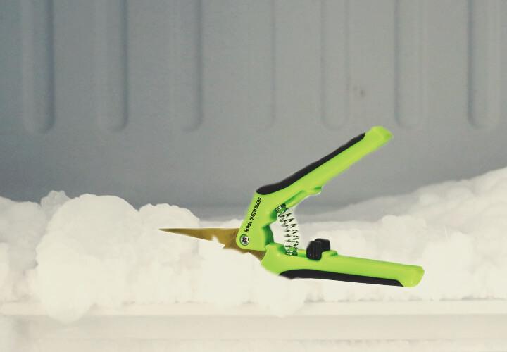 Congela tus tijeras de manicurado