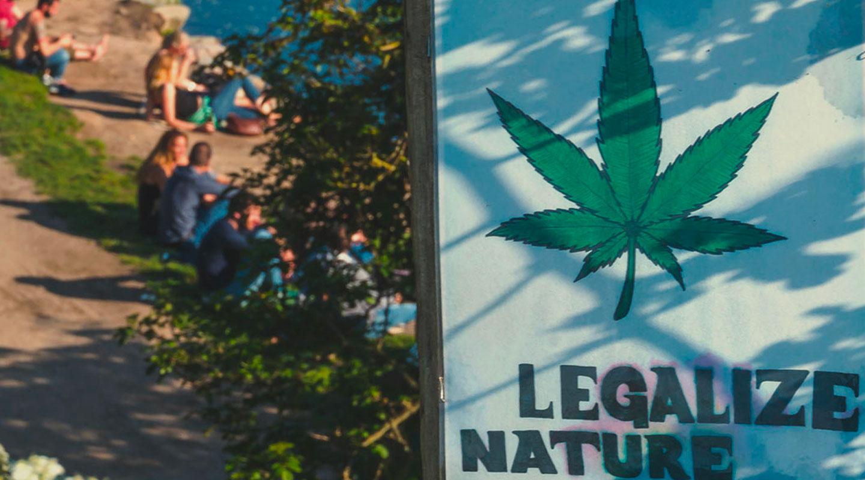 La complicada situación jurídica del cannabis