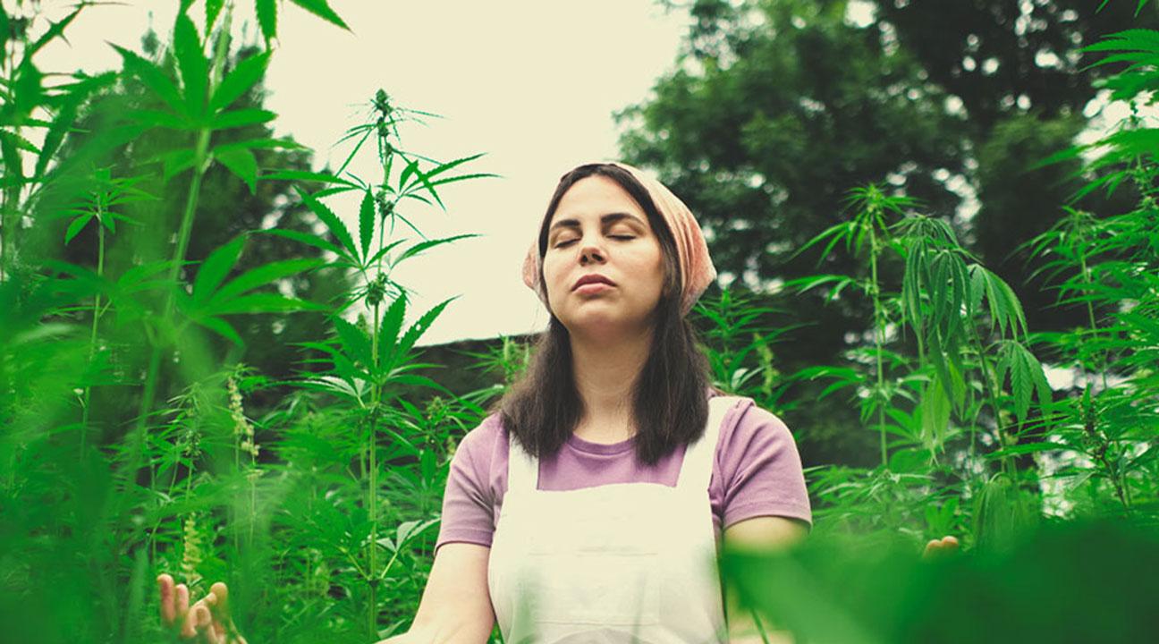 ¿Puedes compartir con nosotros alguna práctica que podamos utilizar para meditar con marihuana?