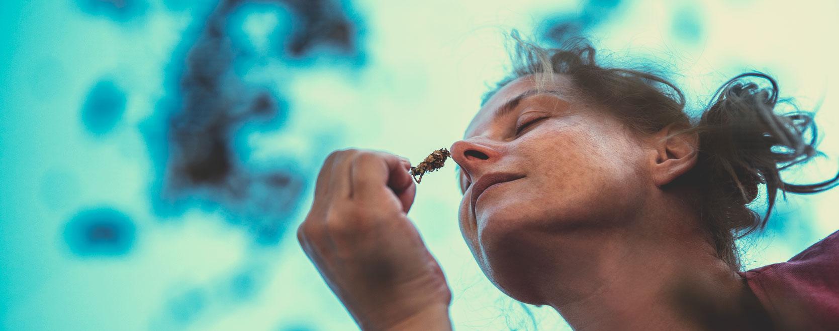 ¿Puede la marihuana ayudar a las personas a lidiar con la ansiedad, el estrés, la pérdida de peso, dejar de beber alcohol…?