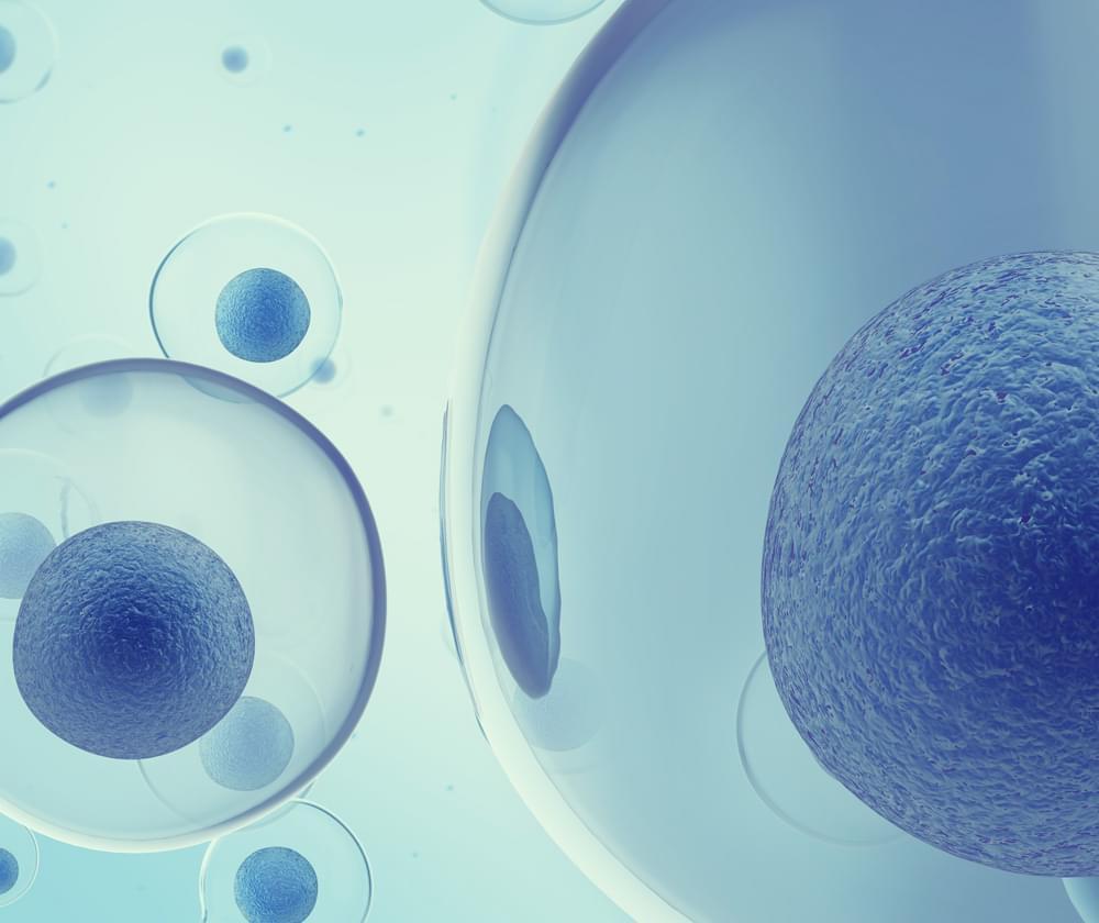 MRSA cannabis resistencia a antibióticos infección bacteriana