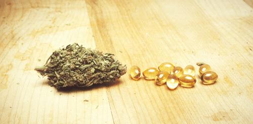 cannabis terapéutico médico paciente