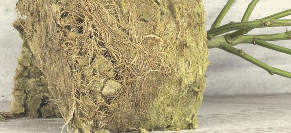 ¿Se puede convertir la lana de roca en abono?