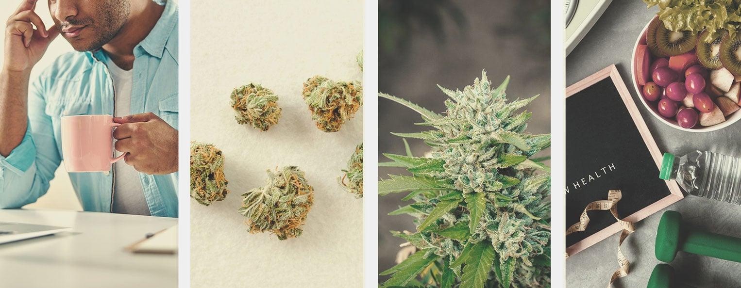 Cómo dejar de fumar marihuana o reducir su consumo