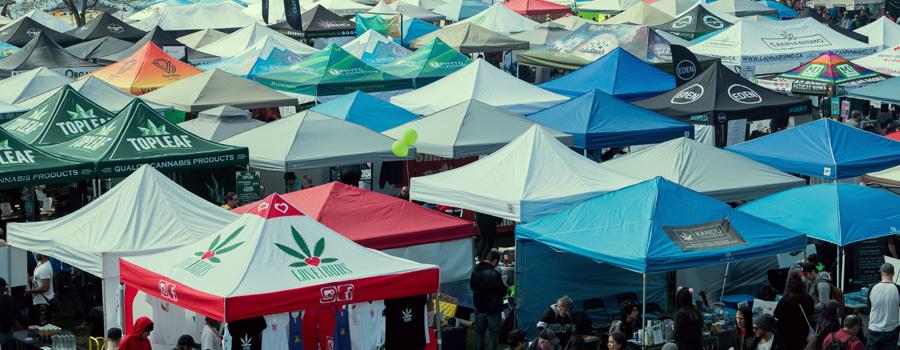 Norml legalizacion cannabis