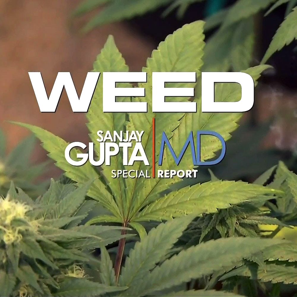 weed documental moderno