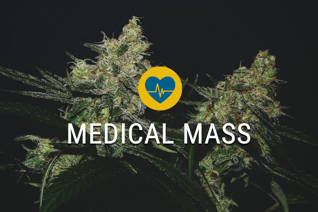 Semillas de Cannabis Medical Mass