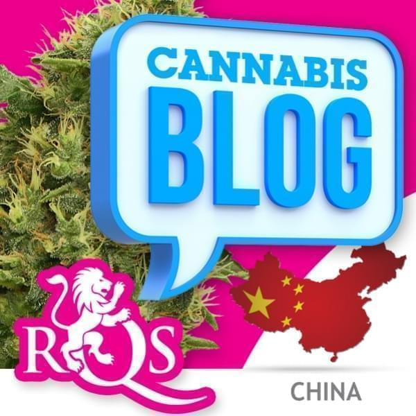 El cannabis en China