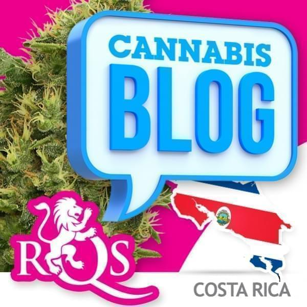Cannabis en Costa Rica