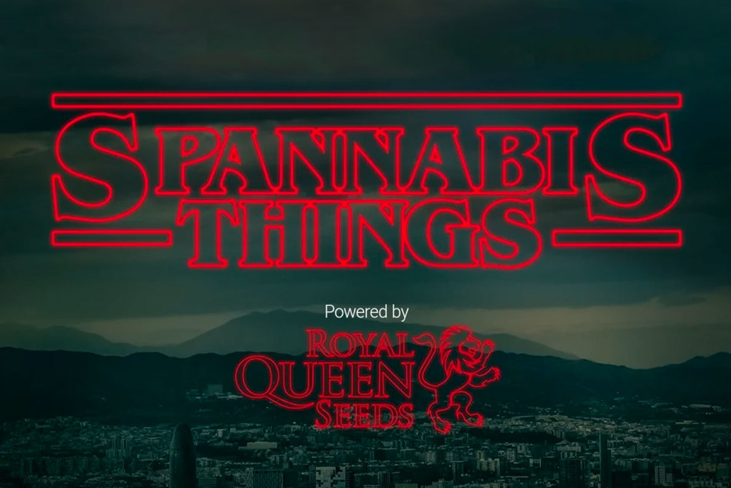 Sorteo Spannabis Things