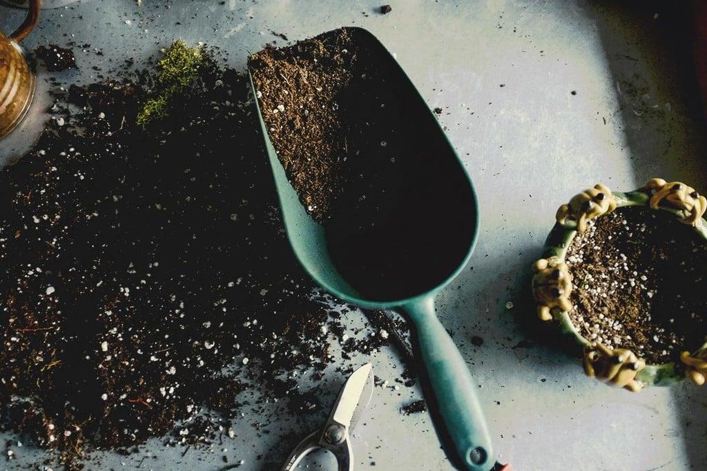 32cf62008505 Crea tu propia mezcla de tierra para cannabis - RQS Blog