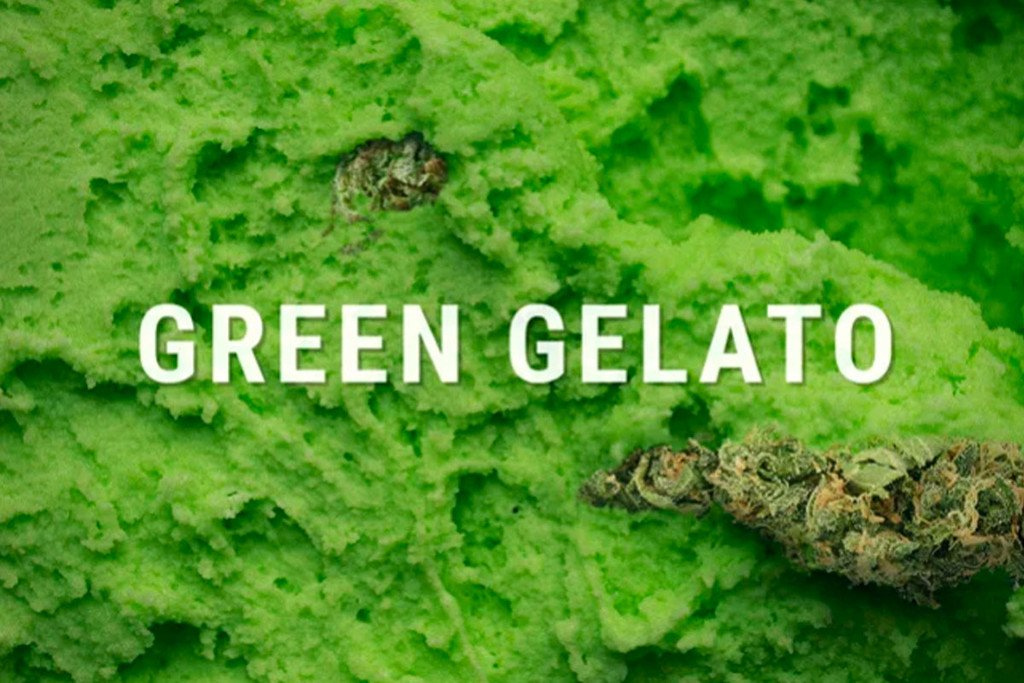 Green Gelato de Royal Queen Seeds